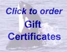 Click to order whale watch gift certificates